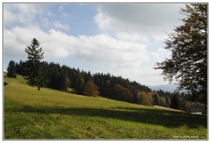 37 Bečva-Třeštík 11.10.2014